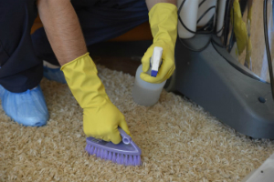 Carpet Cleaning Services Fitzrovia W1