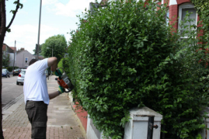 Gardening Services Highbury West N4