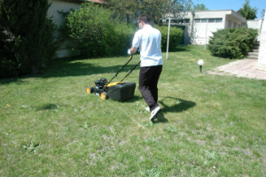 Gardening Services Fairlop Waters IG2