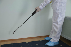 Pest Control Services Barbican EC1