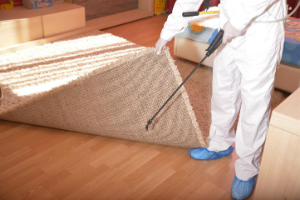 Pest Control Services London