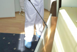 Pest Control Services East India E14