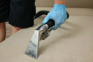Upholstery Cleaning Services Holloway N7