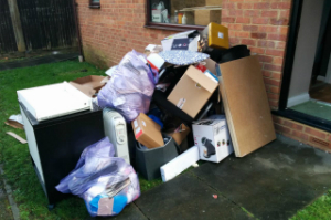 Waste Removal Services Leaves Green BR2
